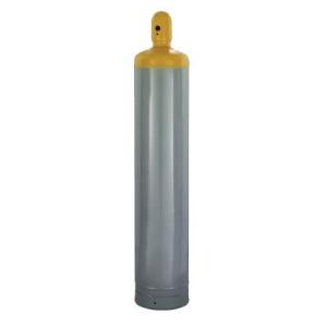 Pro Window Door Gun Foam 20 oz 7565002010